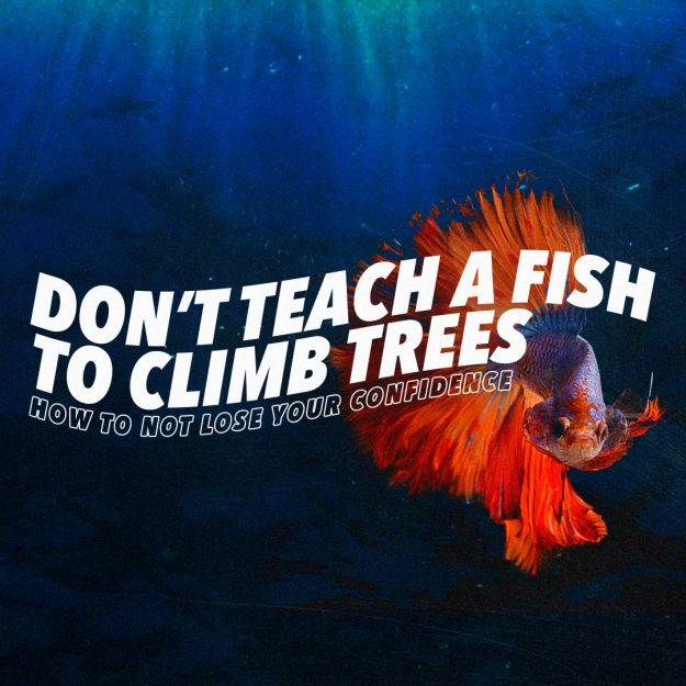 Don't Teach a Fish to Climb Trees – How to not lose your confidence